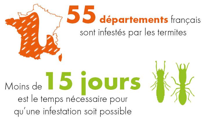 Termites chiffres